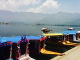 "Dal is a lake in Srinagar, the summer capital of Jammu and Kashmir. The urban lake, which is the second largest in the state, is integral to tourism and recreation in Kashmir and is named the ""Jewel in the crown of Kashmir"" or ""Srinagar's Jewel""."