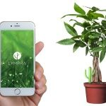New #Lympha to #plants thanks to the #smart #irrigation