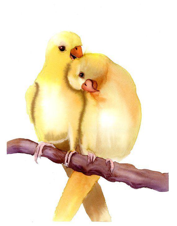 Perroquets Art Imprimer L Aquarelle Oiseaux D Amour Peinture Jaune