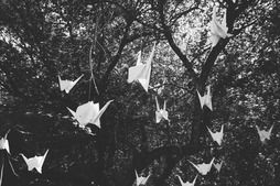 A friend made these giant origami paper cranes to hand above us. It created a romantic feel and people just loved them.