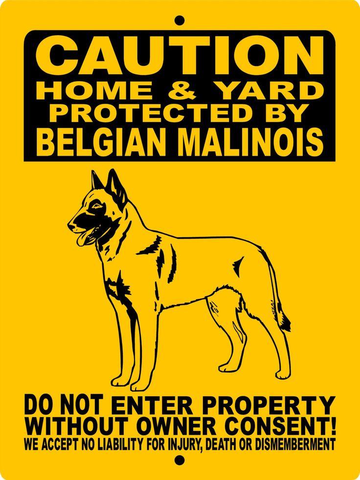 """Belgian Malinois Dog Sign 9""""x12"""" """"ALUMINUM"""" H2496hybm by animalzrule on Etsy https://www.etsy.com/listing/206840458/belgian-malinois-dog-sign-9x12-aluminum"""