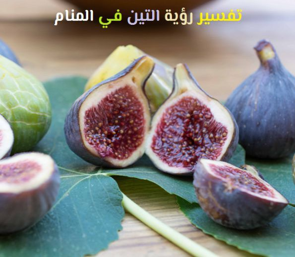 ما هو تفسير رؤية التين في المنام لابن سيرين موقع مصري Indigestion Remedies Figs Breakfast Home Remedies For Indigestion