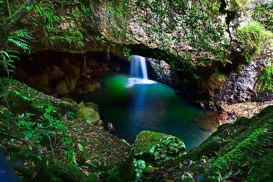Springbrook National Park, Brisbane