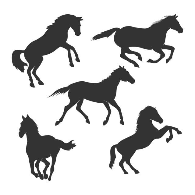 Beautiful Horse Silhouette Graphic Design Template Set Horse Clipart Black And White Png Horse Png And Vector With Transparent Background For Free Download Horse Silhouette Graphic Design Templates Animal Silhouette