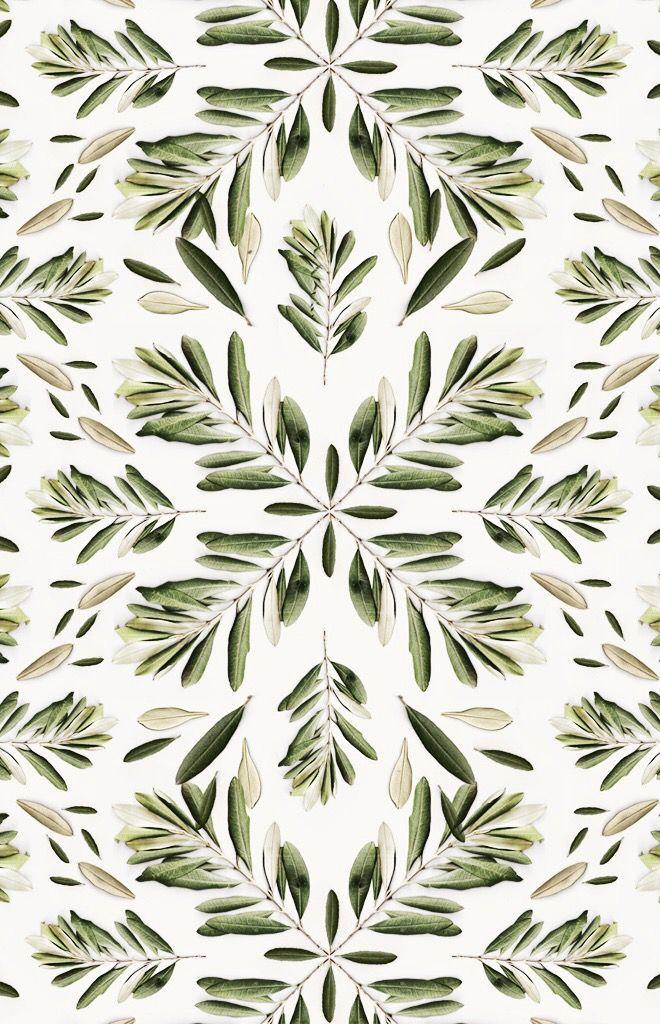 #pattern #leaves #natural #plant