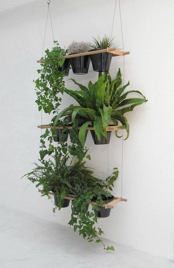 zimmerpflanzen holzplatten regal hängend deko ideen