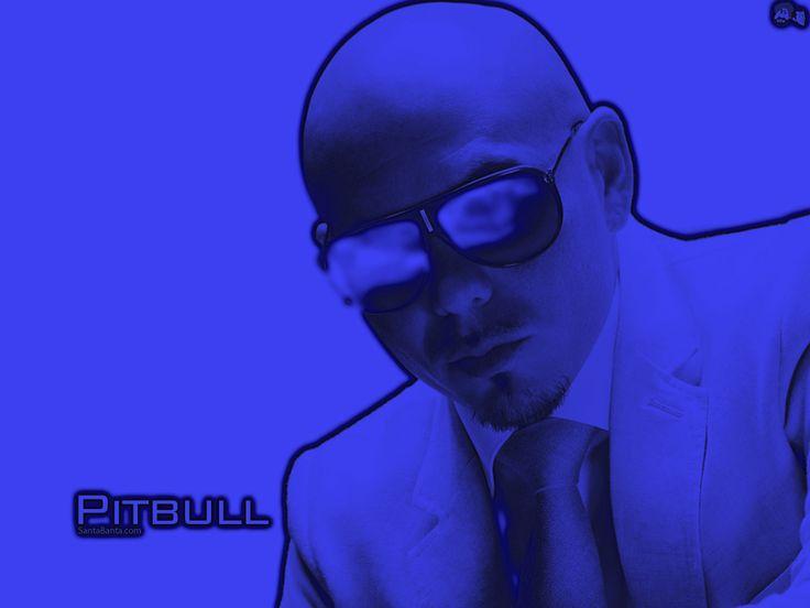 """PITBULL: Armando Christian Pérez (Miami, Florida, 15 januari 1981) is een Cubaans-Amerikaans rapper, ook bekend onder de naam Pitbull. Naast dat hij rapt, schrijft hij ook songteksten. Pitbull rapt meestal in het Engels, maar soms ook in het Spaans of Braziliaans Portugees. Woorden die vaak in zijn nummers te horen zijn: """"Dale"""" en """"Mr. Worldwide""""."""