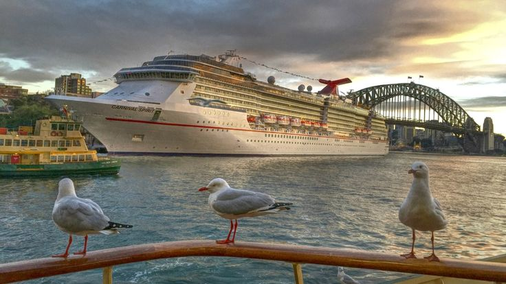 Sydney harbour - by Maarten Schafer