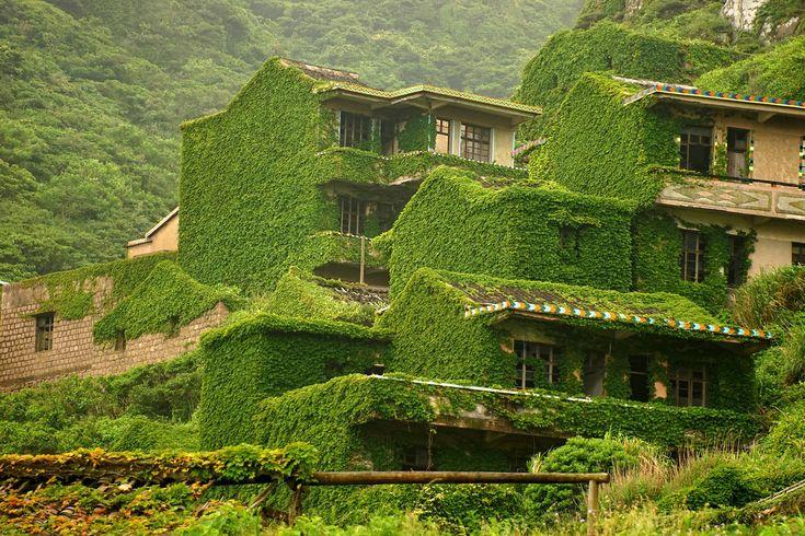 Trepadeiras e outras flora ter envolvido uma pequena vila de pescadores, antigamente habitada em Shengshan ilha cerca de 40 milhas a leste de Xangai, que é parte das ilhas Shengsi, uma cadeia de ilhas na província de Zhejiang da China.