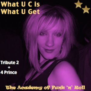 Please buy a copy of this tribute for Prince in aid of Demelza House Children's Hospice Appeal 2014 and share. The Academy Of Funk 'n' Roll Drop Tribute Track In Honour Of Prince - LISTEN NOW!
