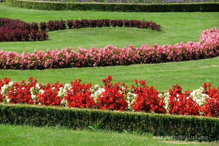 https://flic.kr/p/WvRc6o   Schonbrunn (17)   Palacio de Schönbrunn 2009 (Vintage) El Palacio de Schönbrunn, también conocido como el Versalles vienés, es uno de los principales edificios históricos y culturales de Austria, desde el siglo XIX ha sido una de las principales atracciones turísticas de la ciudad de Viena y ha aparecido en postales, documentales y diversos filmes cinematográficos. El palacio, junto con sus jardines, fue nombrado Patrimonio de la Humanidad de la Unesco en 1996. Si…
