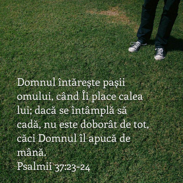 Ps.37:23-24