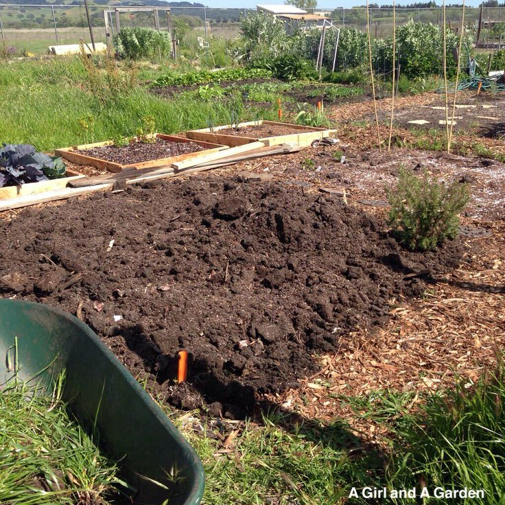 Prepping a 15x15 community garden plot
