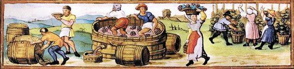 Im Mittelalter wurden die Presstechniken bei der Weinherstellung  verfeinert und es wurde von Region zu Region verschiedenen Rebsorten Experimentiert. Dadurch gewann der Weinanbau vieler Orts an Bedeutung.