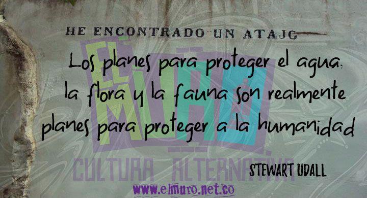 """""""Los planes para proteger el agua, la flora y la fauna son realmente planes para proteger a la humanidad""""   Stewart Udall Feliz día del medio ambiente para todos y todas! Visítanos en www.elmuro.net.co #Tierra #Agua #Flora #Fauna #SomosSemilla #Humanidad #DiaDelMedioAmbiente #Ambiente #FraseDelDía #FelizLunes #RevistaElMuro #Conservación #proteccion #ley #Plan"""