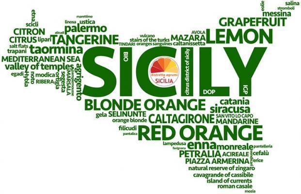 Social Farming Il Distretto Agrumi Di Sicilia Punta Sull