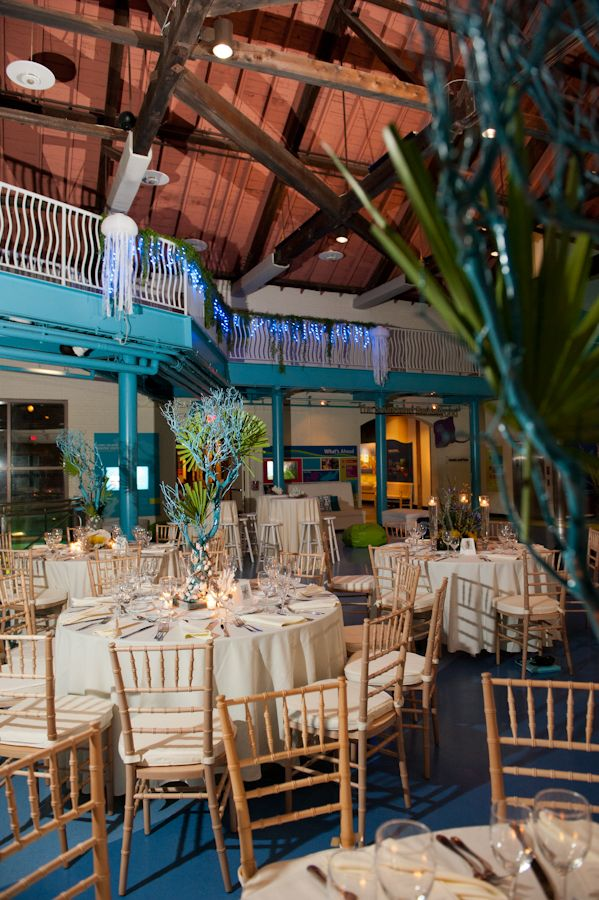 Under The Sea Wedding Theme | Candi's Floral Creations