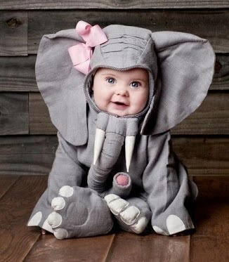Cute girl elephant costume - so adorable. If I have a little girl, she will wear this for Halloween one year.. :)