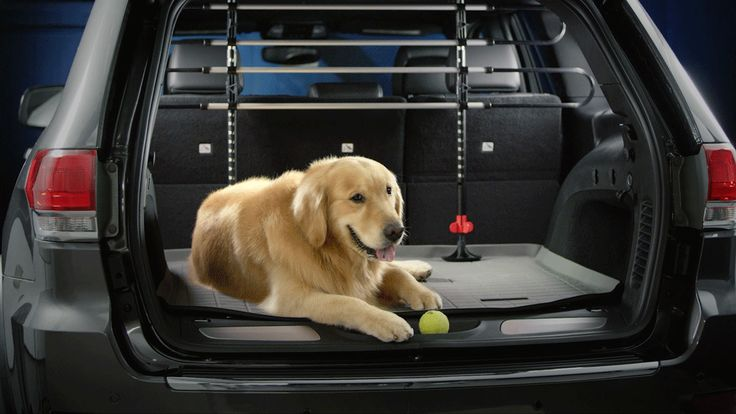 Your dog will remain safe and secure in the back of your vehicle with the WeatherTech Pet Barrier. Made in USA.