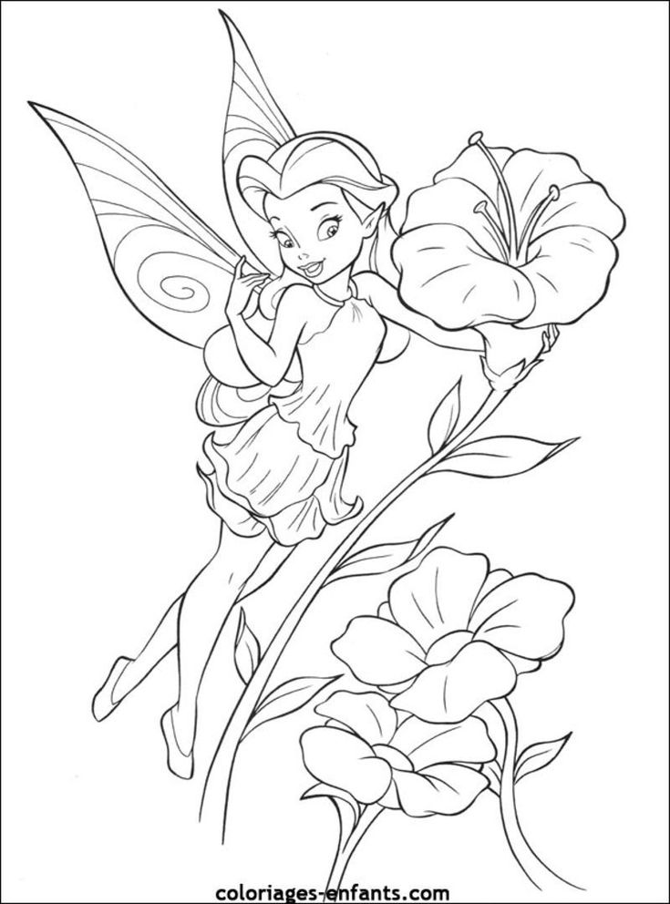 79 best Fairy Colouring Pages images on Pinterest Coloring pages - copy coloring pages barbie mariposa