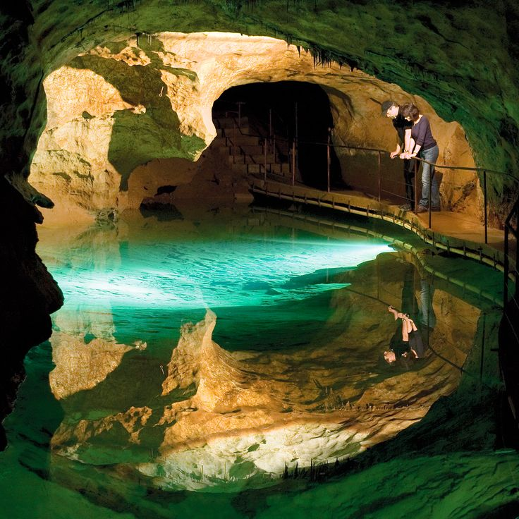 There are many activities at Jenolan Caves to suit everyone, plus accommodation & food. Searched our website but still have questions? Try this page.