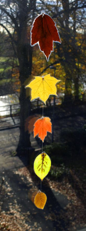 "Thread laminated leaves to make an autumn leaf  suncatcher ("",)"
