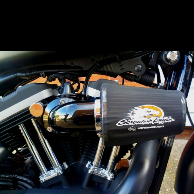 17 Best Images About Hd Sportster Inspiration On Pinterest