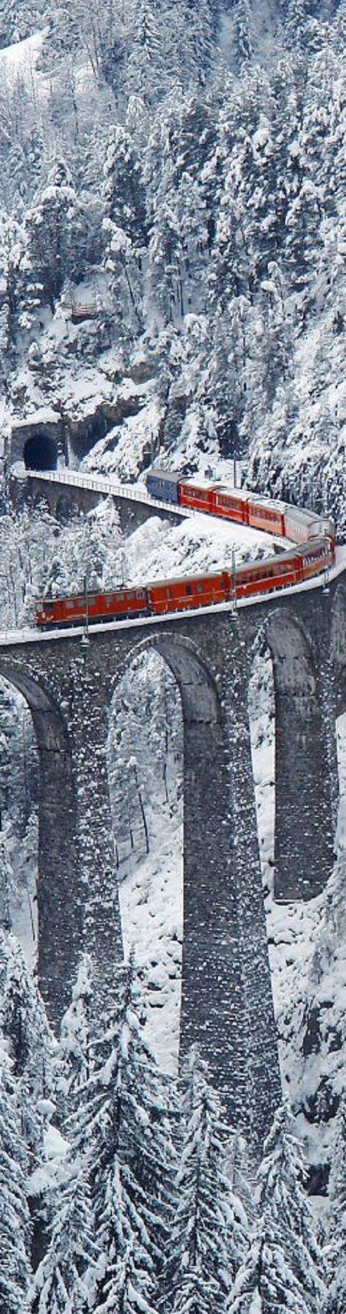 #winterwedding #honeymoon #Graubunden #Switzerland #pinetrees #train #European #romantic