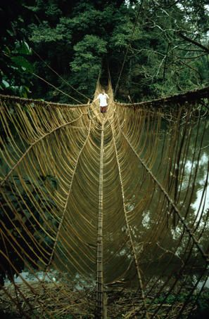 A vine bridge resembling a spiders web near Mamfe.