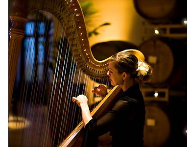 Learn to play the harp. This is actually a huge one that I REALLY wanna do some day