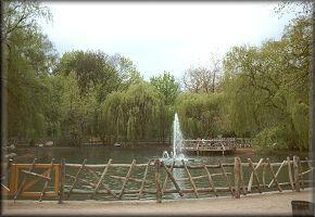 kleiner Teich im Volkspark-Friedrichshain