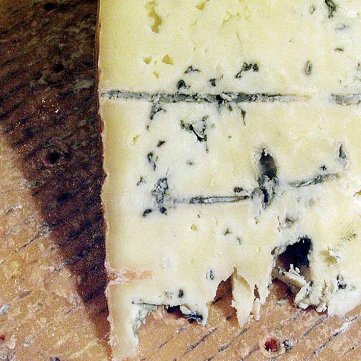 Penicillium Roqueforti (Blue) Mold Powder - 1/4 oz.