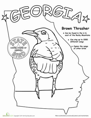georgia state symbols coloring pages - photo#20