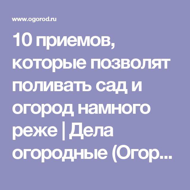 10 приемов, которые позволят поливать сад и огород намного реже | Дела огородные (Огород.ru)