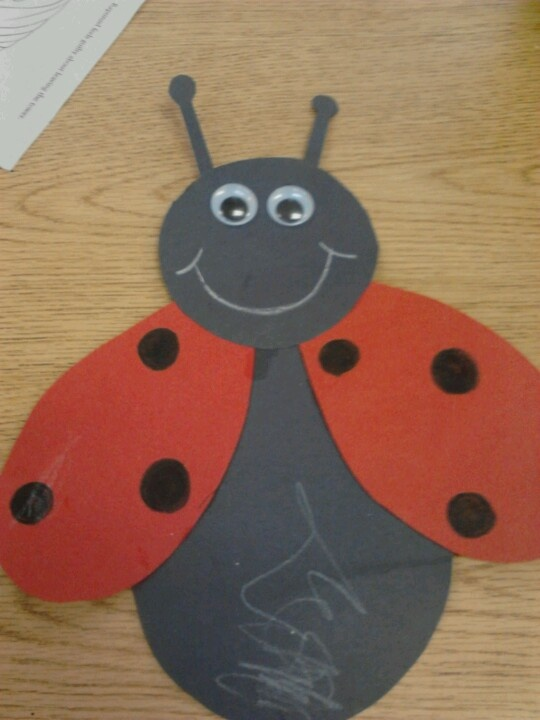ladybug crafts for preschoolers 39 best preschool bug theme images on 615
