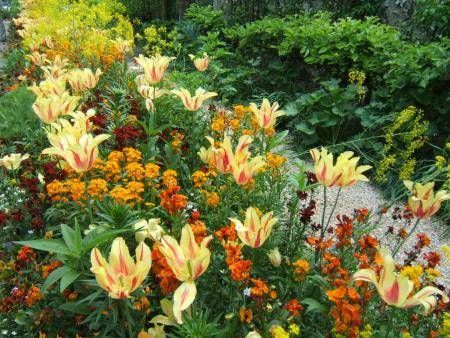Jardins – Fotos Bonitas