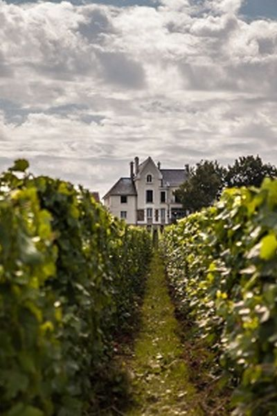 Less than a two-hour drive from Paris lies the near-mythical French region of Champagne, a bucket-list destination for wine lovers.