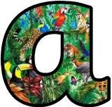Free printable Jungle, Rainforest animals instant display lettering sets for classroom bulletin board display.