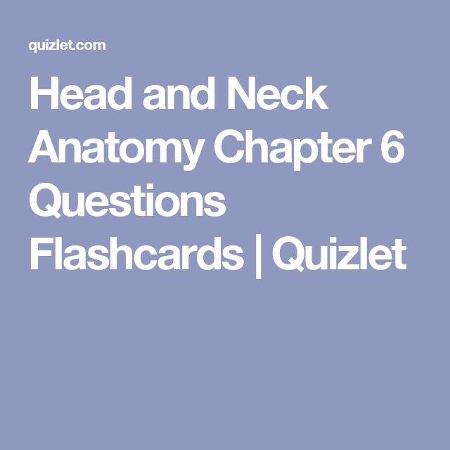 Head And Neck Anatomy Chapter 6 Questions Flashcards Quizlet