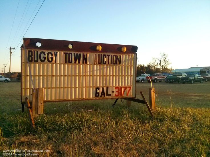 A trip to the Buggy Town Auction in Barnesville, GA.