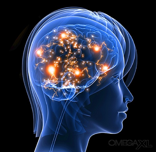 Are you ready to increase your brain power and stay sharp?