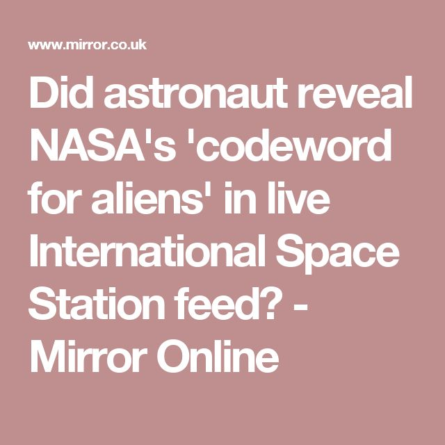 Did astronaut reveal NASA's 'codeword for aliens' in live International Space Station feed? - Mirror Online