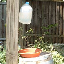"""Attract more birds to your bird bath with a homemade """"dripper"""" made from a recycled milk jug."""