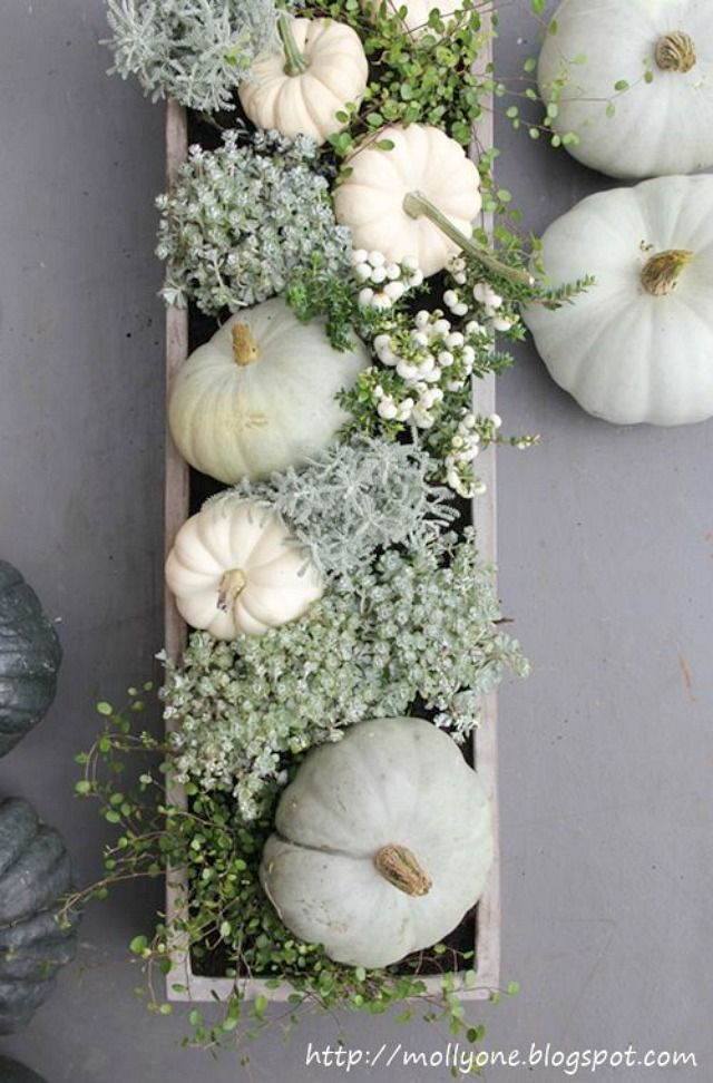 9 Ways to decorate with white pumpkins