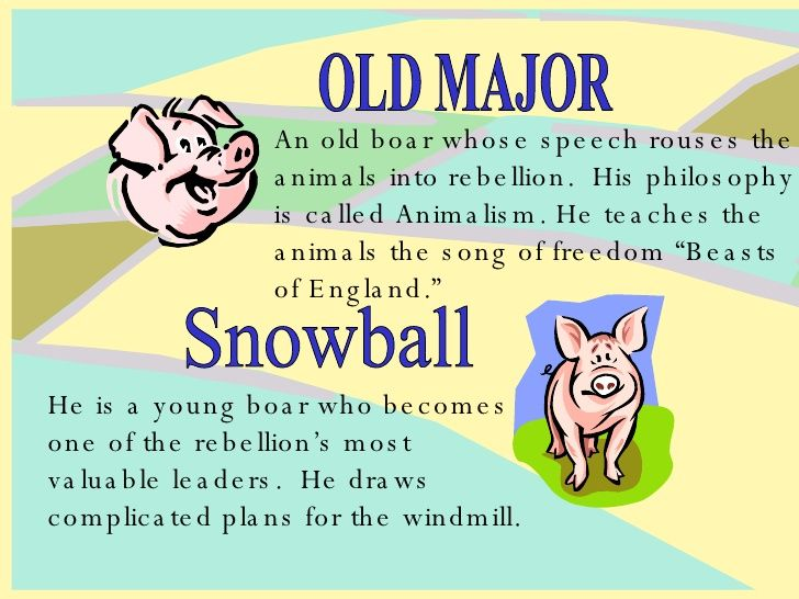 an analysis of the movie animal farm written by george orwell George orwell has used many techniques of writing such as irony and humour to portray significant events throughout animal farm this extract, just after the.