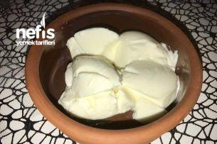 Taş Gibi Yoğurt Yapımı – Nefis Yemek Tarifleri