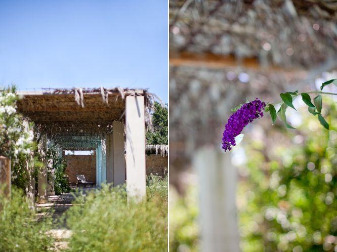 Kyriakos garden