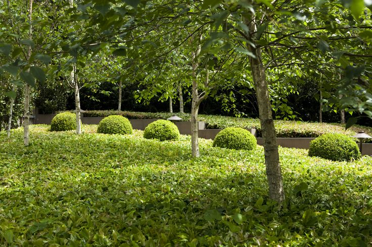 French Inspired - Peter Fudge Gardens