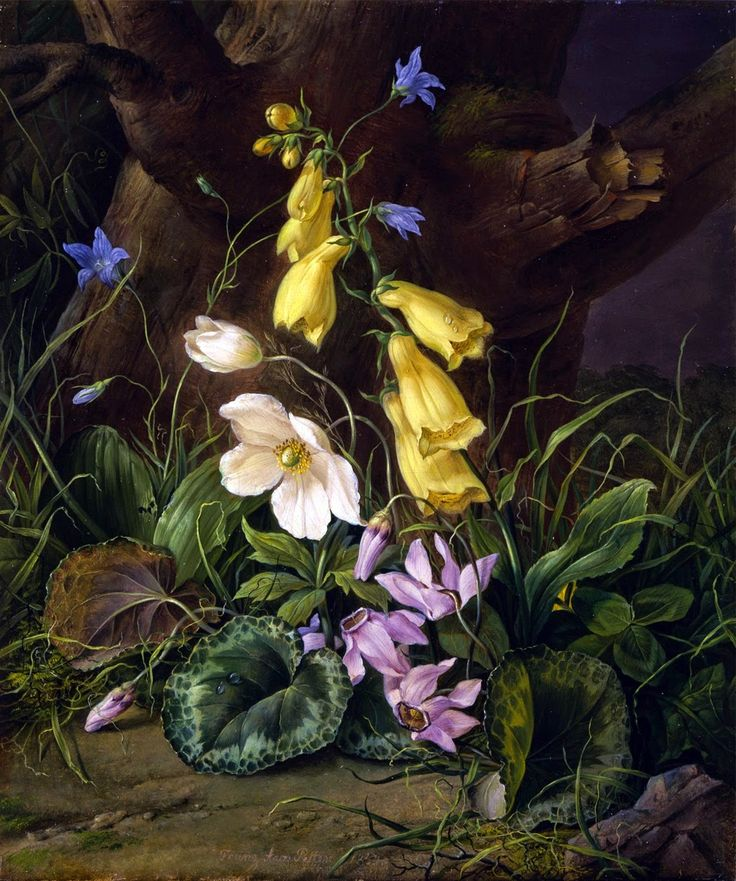 Franz Xavier Winterhalter /German painter Art, Flower
