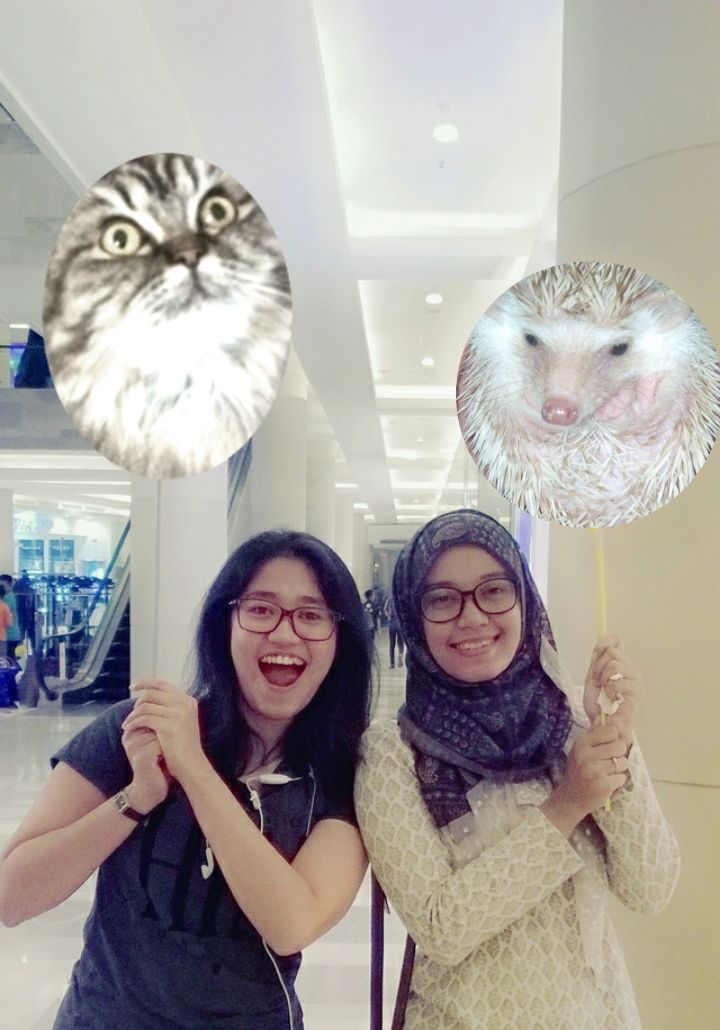 Fobia and her pretty friend. The felyne is Ciki, Cinta's pet; while the hedgehog is Herman's.
